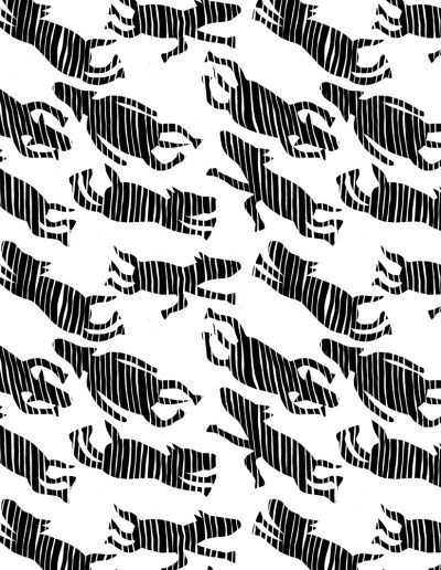 vliegende zebra's